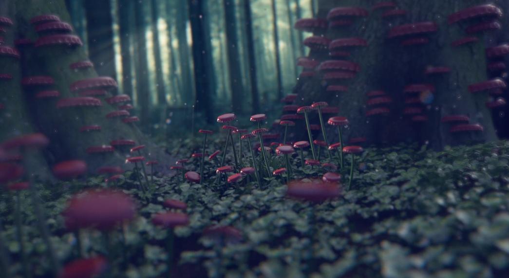 Branded_Dreams_04.jpg