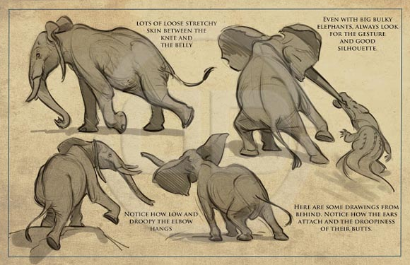 tembo-elephant.jpg